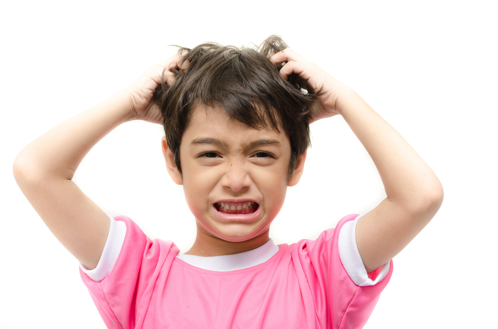 Lice: Just the Word Makes You Itch