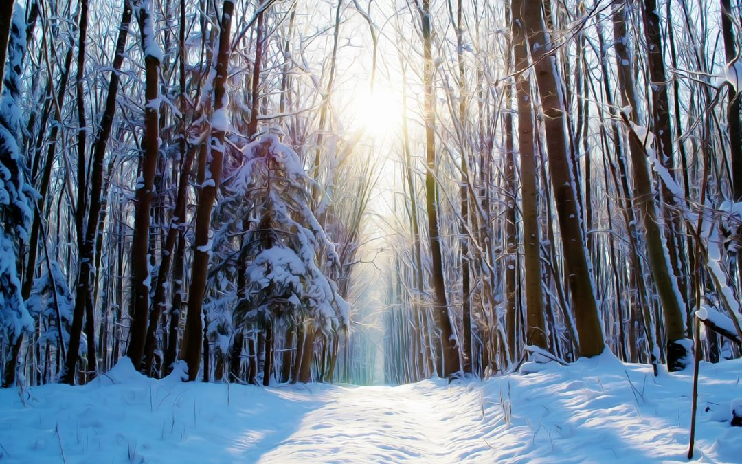 What Is a Winter Cleanse?