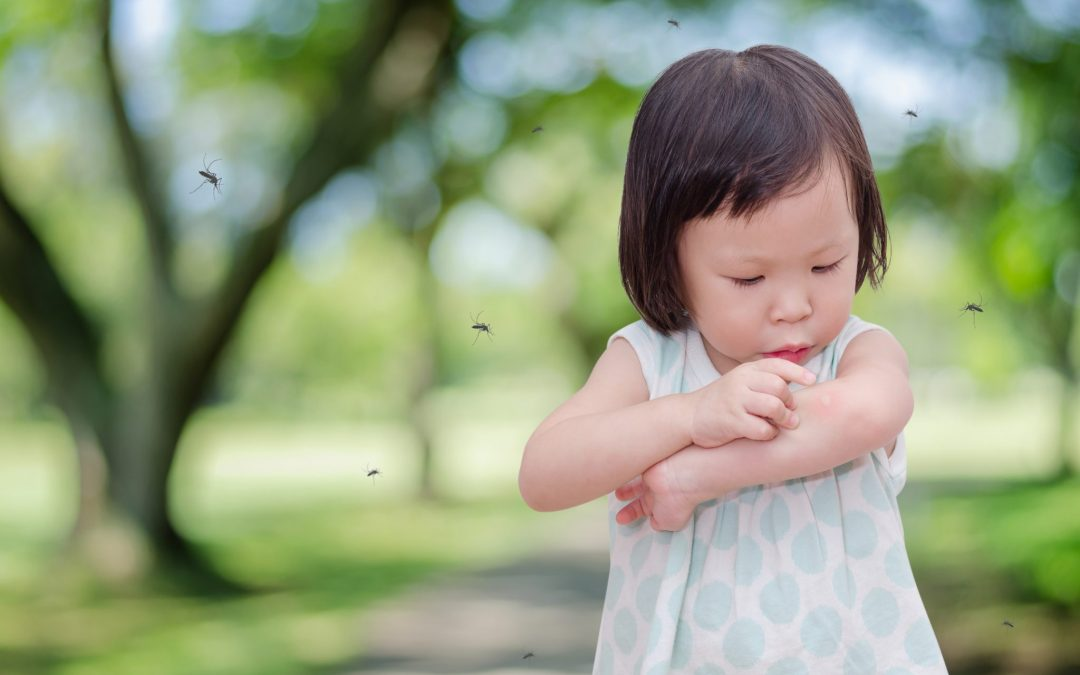 Don't Let Insects Bug You: Treating Bites & Stings
