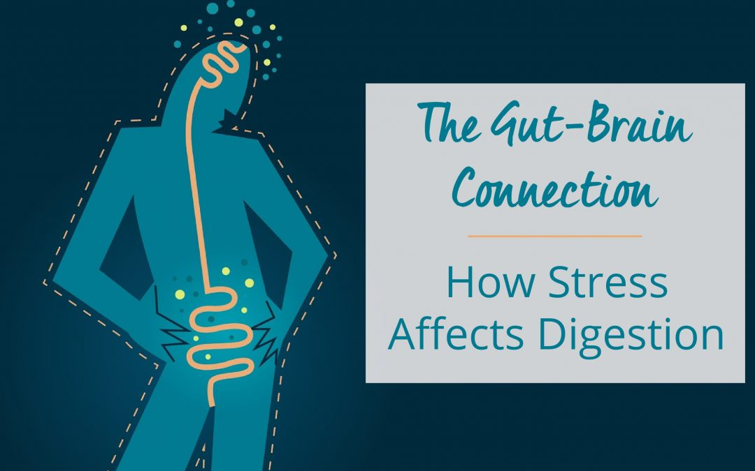The Gut-Brain Connection: How Stress Affects Digestion
